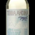 Terra Andina Sauvignon Blanc 75CL gall